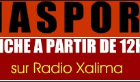 pikine_diaspora_header