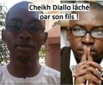 cheikh diallo et fils