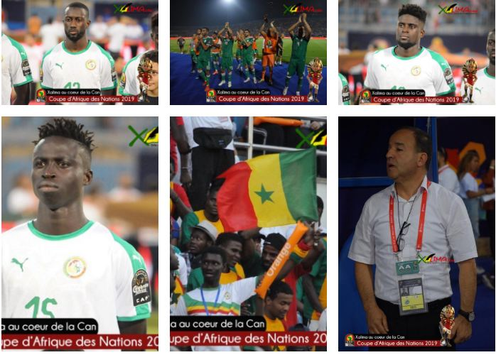 photos    can 2019  s u00e9n u00e9gal vs alg u00e9rie  r u00e9sum u00e9 du match en images